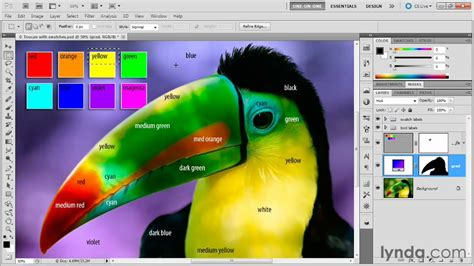 color channels in photoshop 300 free photoshop tutorials understanding the photoshop color channels lynda com