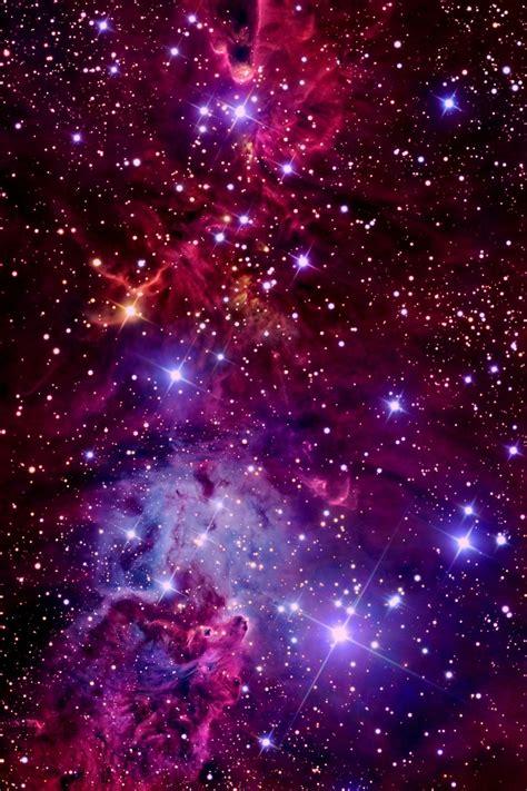 christmas tree nebula nox vigilata the tree cluster fox fur nebula and