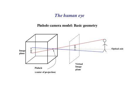 pinhole model powerpoint on the eye