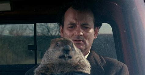groundhog day 1993 free groundhog day sky showing a 24 hour marathon of to