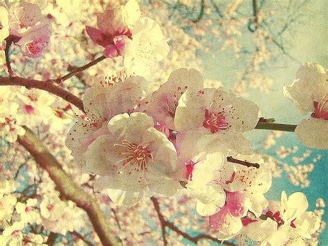 imagenes vintage para facebook untitled via tumblr image 1696370 by taraa on favim com