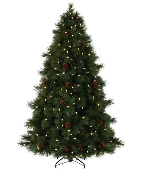 virginian pine christmas tree tree classics
