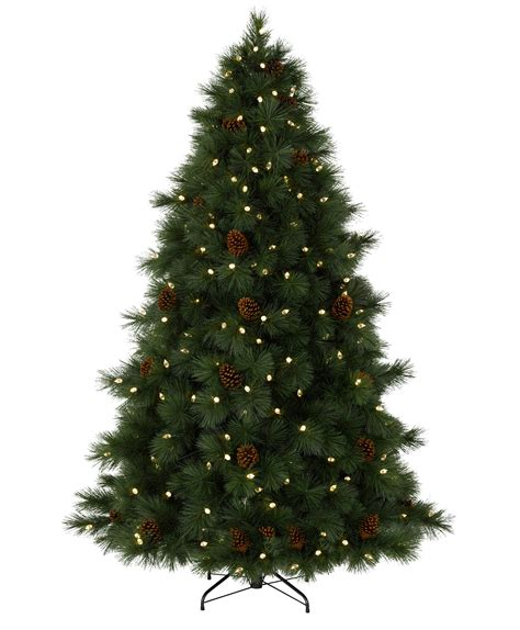 what type of christmas tree lasts the longest virginian pine tree tree classics