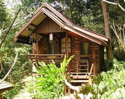 Tiny House Cabin by Tropical Tiny Cabin Logs Or Bamboo Tiny House Pins