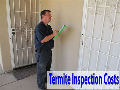 bed bug inspection cost pest control cost