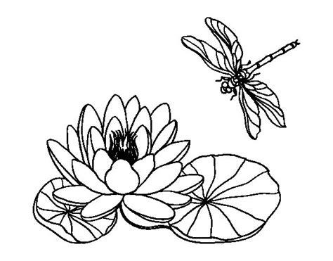 fior di loto disegno disegno di fiore di loto da colorare acolore