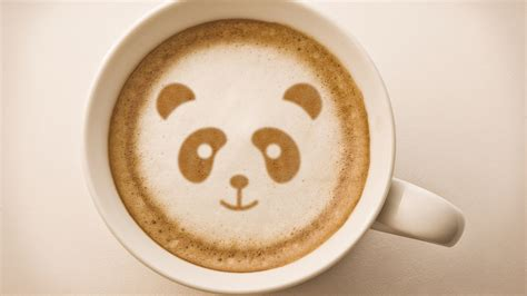 wallpaper coffee latte panda latte art full hd wallpaper and background