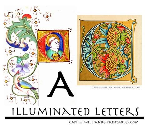 illuminated letter templates free decorative letter b ornamental letterforms and