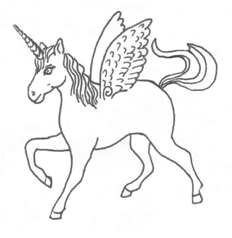 Unicorn Outline by Unicorn Line Drawing Coloring Home