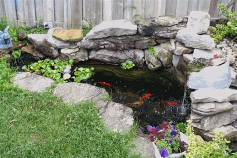 Small Backyard Koi Pond by Koi Pond Koi Pond