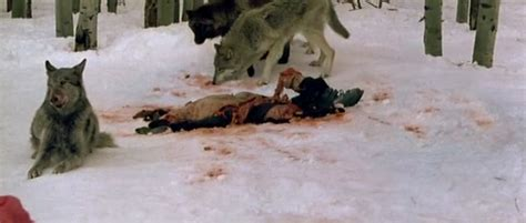 frozen film wolf scene raysfilme horror thriller science fiction frozen