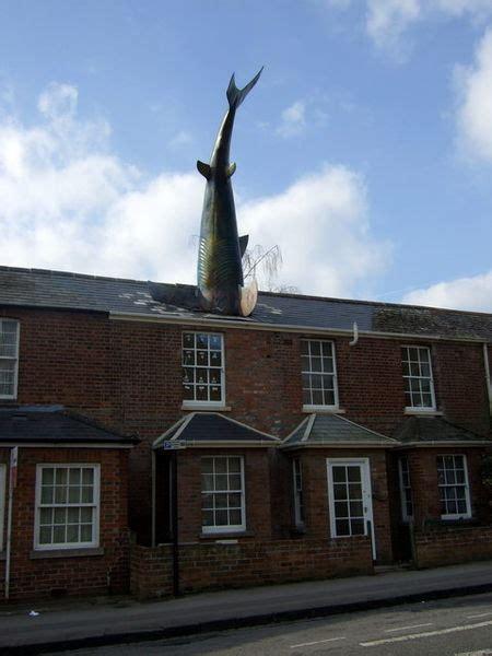 shark house headington shark house up for rent three bedroom house in oxford has giant shark on