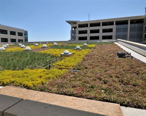 liveroof green roof systems live roof live roof year one slip sheet jpg