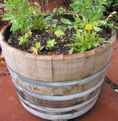 ideen für garten idee garten pflanzen