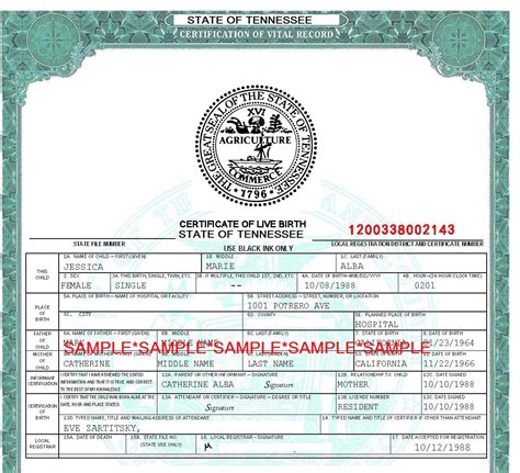 Tennessee Birth Records Free Tennessee Birth Certificate Application Form Vocaalensembleconfianza Nl