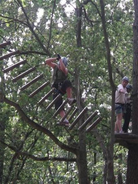 parc anjou aventure angers top tips before you