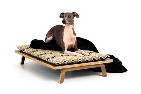 modern dog beds 15 ultra chic dog beds for every pup parent s style and