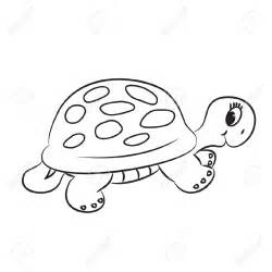 Turtle Outline Vector by Best Turtle Clipart Black And White 12964 Clipartion