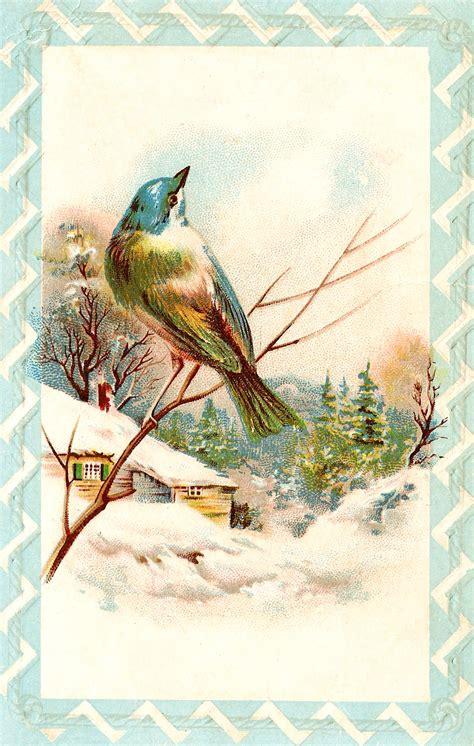 christmas vintage birds cats mice misc animals  pinterest vintage christmas cards