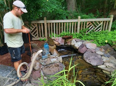 backyard fish pond maintenance summer pond cleaning and pond maintenance