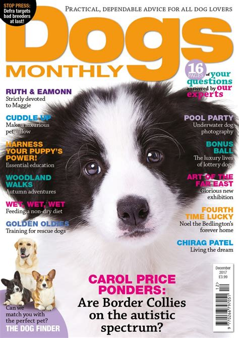 The Newsletter Magazinedecember Issuei by What S In Our December Issue Dogs Monthly