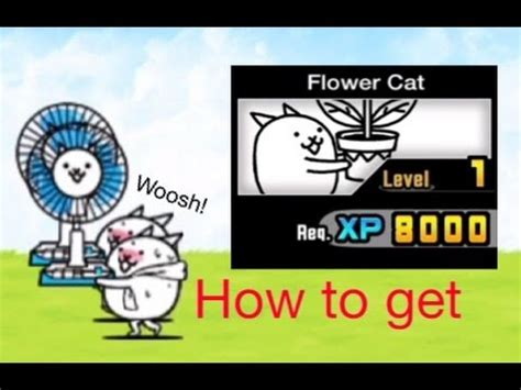how to get a and cat to get along thebattlecats how to get quot flower cat quot