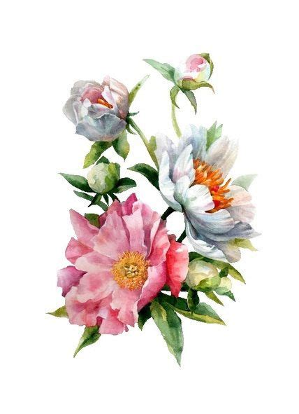 best 25 watercolor flower painting ideas on flower drawing gallery