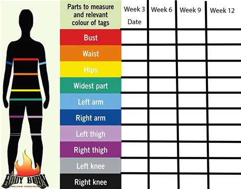 6 body measurement chart procedure template sle