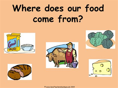 where does come from where our food comes from ks1 lesson plan and worksheet by