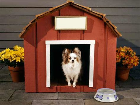 House Dogs Types Of Dog Houses Different Types Of Dog House