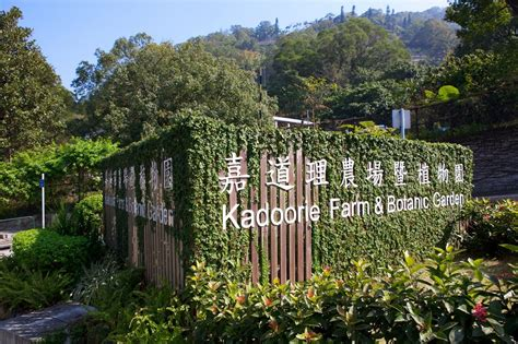 Botanic Farm Panoramio Photo Of 嘉道理農場暨植物園入口 Entrance Of Kadoorie Farm