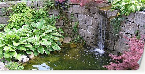 ab wann wächst der bauch in der ss alkis schumac g en und landschaftsbau 28 images