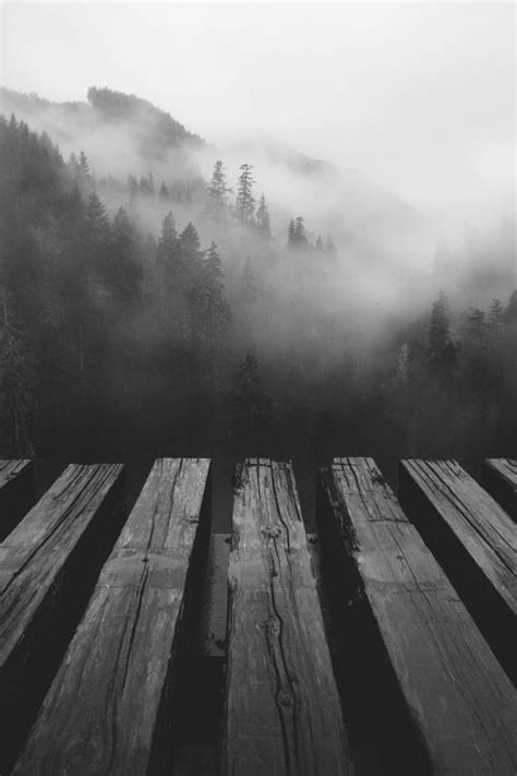 imagenes tumblr black and white 17 mejores ideas sobre blanco y negro en pinterest
