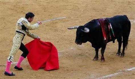 why do bulls the color why do bulls colour quora