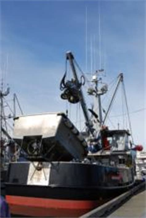 offshore fishing boat jobs deckhand jobs on crab boat in alaska autos post