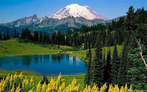 mountains landscapes nature forests national park mount