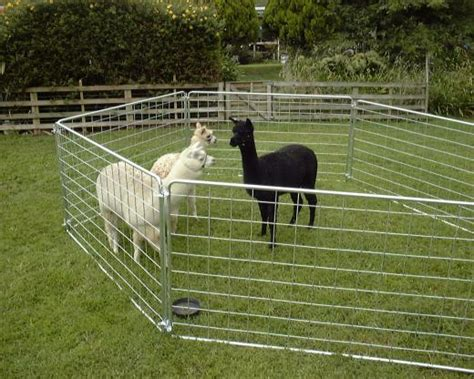 temporary backyard fence temporary fences for hire and for sale portable alpaca yards
