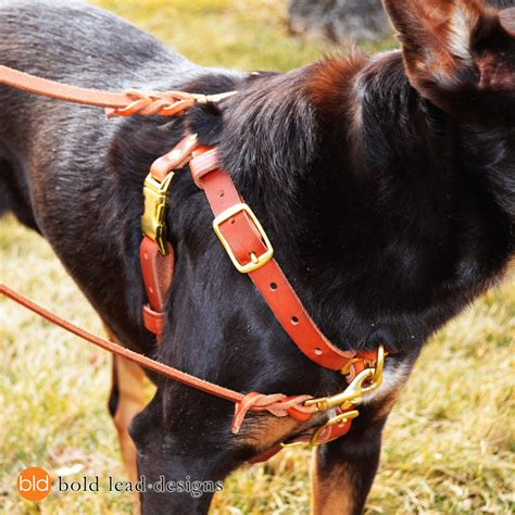 walking harness connected harness a leather no pull walking harness 2 point front