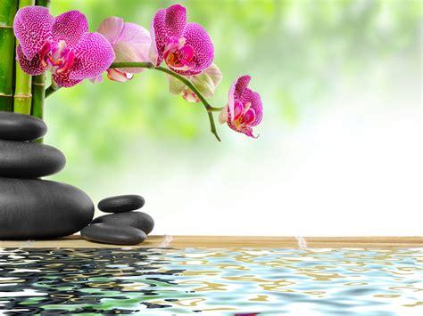 imagenes flores zen zen mareiki ॐ
