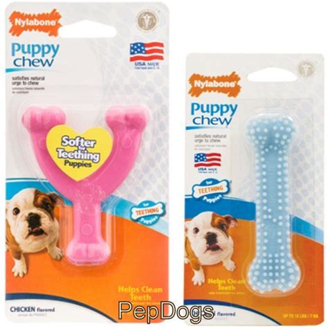 chew toys for teething puppies nylabone puppy chew chicken flavored teething puppies helps clean teeth ebay