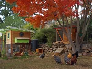 Backyard And Garden Chicken Coop Plans And Kits Thegardencoop