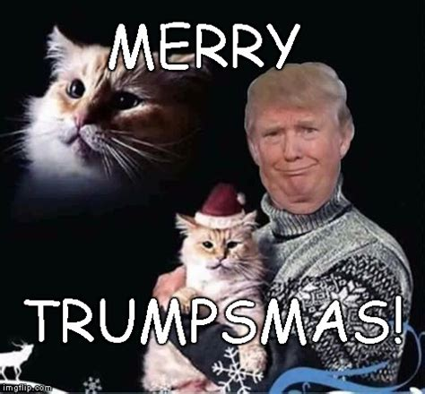 Merry Christmas Cat Meme - merry trumpsmas imgflip