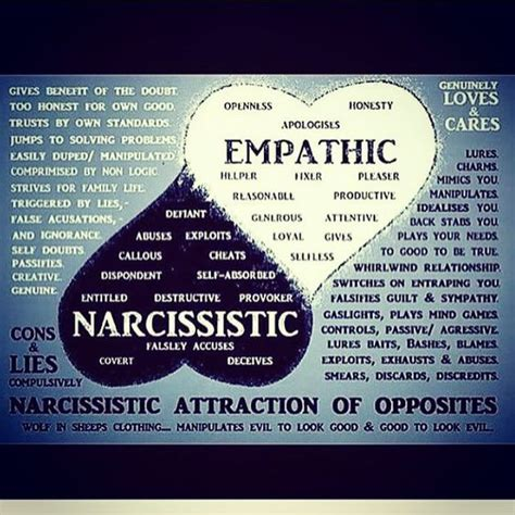 pinterest narcissistic denial 843 best images about narcissist sociopath on pinterest