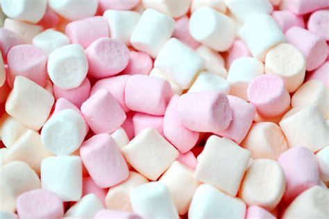best marshmallow sweet sensation 3 of the best marshmallows