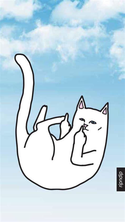 ripndip wallpaper cat ripndip on twitter quot ripndip and ripndip with a screen