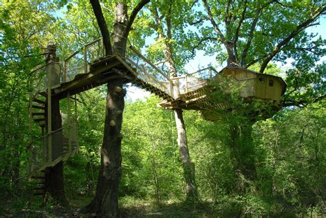 real treehouse tree houses alicourts luxury treehouses in french