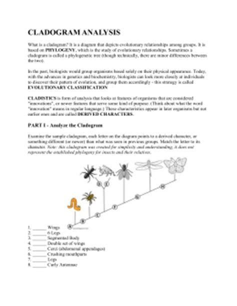 Cladogram Worksheet Answers by Cladogram Worksheet Answers Worksheets For School Getadating