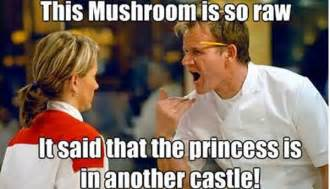 Ramsey Meme - 1000 images about gordon on pinterest gordon ramsay