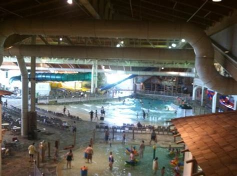 great wolf lodge sandusky bed bugs bed bugs great wolf lodge swim area picture of econo