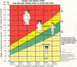 What is body mass index better fitness daily